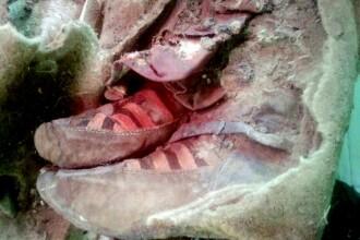 Mumie veche de 1500 de ani, gasita in muntii din Siberia. De ce cred arheologii ca este o