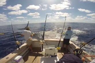 Un peste-sabie s-a napustit asupra unui pescar. Cateva secunde l-au salvat pe barbat. VIDEO