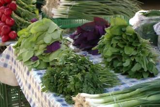 Locul unde gasesti produse mai ieftine si mai sanatoase ca cele din supermarket. Agricultor: