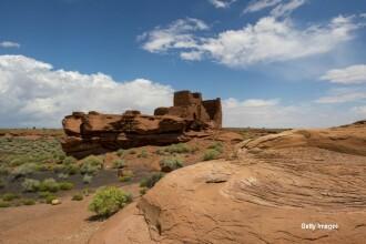 Cum a reusit aceasta batranica sa supravietuiasca noua zile in desert, fara apa. Ideea care a ajutat-o sa se salveze