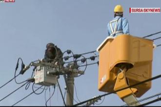 Mobilizare de forte in Japonia, dupa ce un cimpanzeu a evadat de la gradina zoologica. Unde l-au prins pe