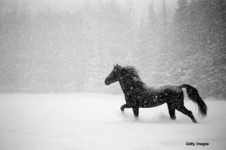 Si-a ucis sotul legandu-l cu o funie de gat si tragandu-l cu calul prin zapada. Pedeapsa primita de rusoaica si amantul ei