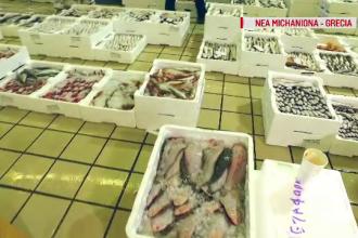 Piata de peste din Romania este una de sute de milioane de euro, din care noi producem doar 12%. Cum e la greci sau bulgari