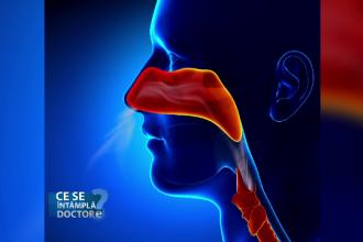 De ce trebuie sa mergeti la neurolog daca nu va scade mirosul din cauza unei raceli sau alergii. Medicii explica motivul