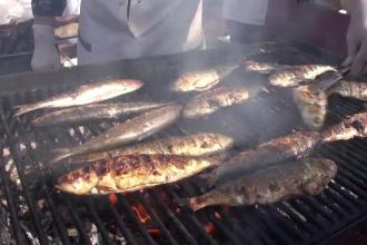 Festivalul scrumbiei la Galați, fără scrumbie. De ce a cam lipsit peştele vedetă