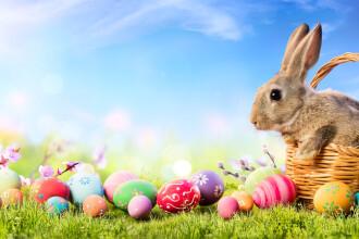 Mesaje de Paște. Ce urări le poți trimite celor dragi de Paște
