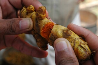Turmericul – o călătorie a gustului, spre India