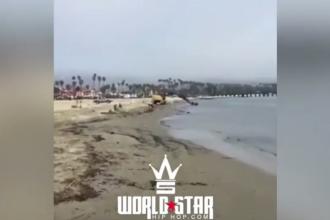 Ce a găsit un tânăr care își plimba câinele pe o plajă din Santa Barbara. A filmat totul