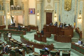 Senatul a respins proiectul USR privind alegerea primarilor în 2 tururi de scrutin