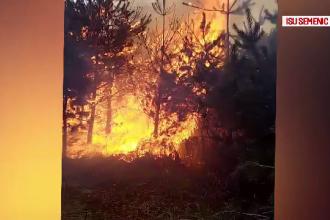 Dezastrul provocat de un incendiu în Caraș-Severin. Au ars peste 80 de hectare