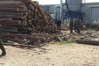 """Percheziții cu scandal, la Târgoviște: """"A venit un băiat să cumpere nişte lăturoaie"""""""