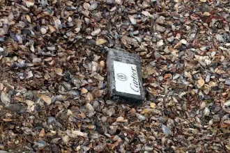 Noi pachete cu cocaină, găsite la malul mării. Inscripțiile misterioase de pe droguri