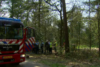 Un avion a rămas suspendat la 10 metri, în copaci. Cum s-a petrecut incidentul