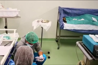Decizia luată de familia unui bărbat din Oradea grav bolnav. A salvat mai multe vieţi