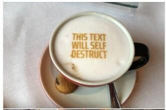"""Ambasada Olandei, mesaj ironic pentru Toader: """"Ni s-a mai şi arătat ceva în cafea"""""""