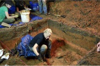 Descoperire macabră în curtea unei școli. Ce s-a găsit ascuns în pământ. VIDEO