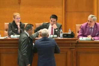 Scandal în Parlament, la votul privind referendumul. Deputatul Rădulescu a sărit să-l apere pe Manda