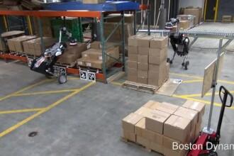 iLikeIT. Robotul care ridică cutii de 15 kilograme și sortează pachetele în depozit