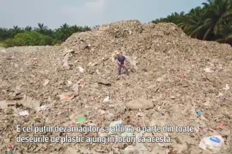 Unde ajunge gunoiul din ţările dezvoltate?