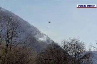 Incendii de pădure și vegetație, în Prahova și Bacău. Elicopter MAI, trimis în ajutorul pompierilor
