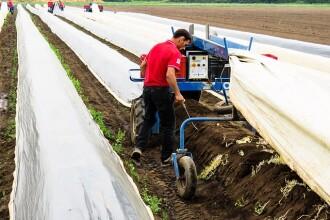 Tinerii agricultori, ajutați cu câte 50.000 de euro. Cum pot primi banii