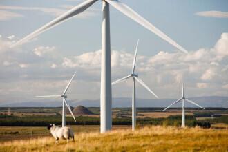 Eolienele din România consumă energie, în loc să producă. Cum s-a ajuns aici