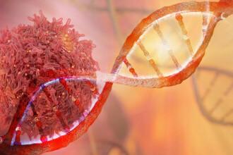 EXCLUSIV: Cum incearca medicii romani sa modifice celulele pentru a le face sa lupte cu cancerul
