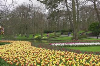 Olandezii au scăpat de o parte dintre restricții. Cea mai frumoasă grădină din țară s-a redeschis