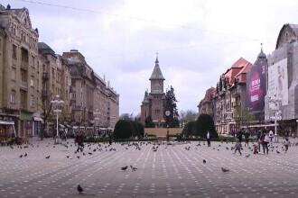 Oraşul unde cei care hrănesc porumbeii ar putea fi amendaţi.
