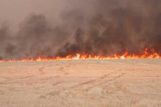 A sfarsit inghitit de flacari, dupa ce si-a incendiat terenul agricol