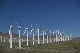 Cel mai mare parc eolian din Europa, inaugurat joi, la Constanta