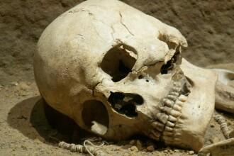 Craniu uman, descoperit pe un camp din judetul Buzau