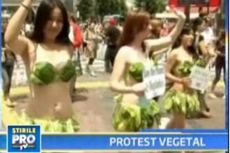 Au protestat imbracate doar in frunze de salata!