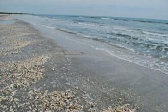 Plaja de la Corbu, pentru cei foarte stresati