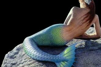 Misterul scheletului de sirena din Bulgaria. Descoperitorul ar mai fi gasit arca lui Noe si moastele Sf. Ioan Botezatorul