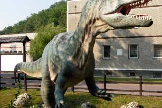 Jurassic Parc poate deveni realitate. Cercetatorii au descoperit celule conservate de dinozaur