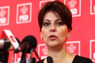 Deputatii PSD vor depune motiune simpla impotriva ministrului agriculturii