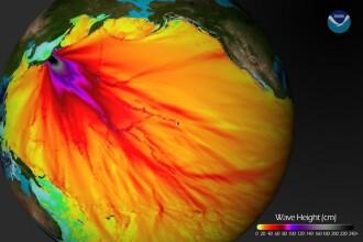 Cutremurul din Japonia a propagat