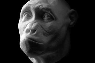 Inapoi la origini. Fotografii spectaculoase cu oameni care au trait in urma cu 6,8 milioane de ani