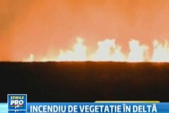 Iad in paradisul de la Vadu. Incendiul care a distrus 500 hectare de vegetatie, provocat de turisti