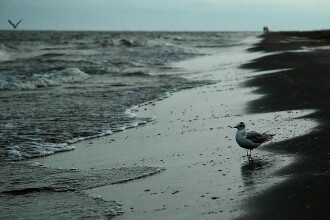 Weekend perfect pe litoral: vreme superba, preturi la jumatate