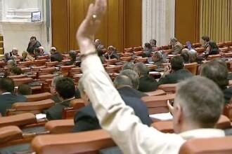 Bogdan Ciuca: Legislatia permite eutanasierea cainilor fara stapan, dar probabil nu se aplica