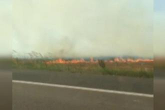 Pe urmele vinovatilor pentru incendiul care a blocat Autostrada Soarelui. Incendierea miristei, ilegala, dar practicata