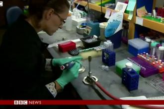 ZMapp, medicamentul experimental impotriva Ebola, produs dupa o munca de 10 ani. Efectele avute asupra primilor doi pacienti