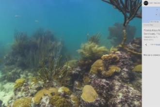 La un click distanta de fundul oceanului. Proiectul pregatit de gigantul Google