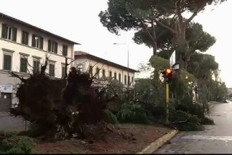 Furtuna devastatoare la Florenta. Zeci de raniti, strazi blocate de copaci si circulatie feroviara intrerupta