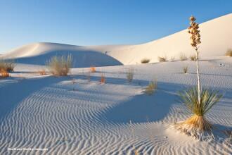 Au plecat la plimbare in desert cu o singura sticla de apa, de 0,5 l. Parintii au murit, dar au reusit sa-si salveze copilul