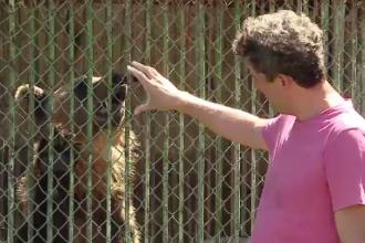 Urși chinuiți la grădina zoologică din Turda