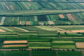 Preţurile terenurilor agricole au explodat. Judeţele unde se cumpără cel mai mult