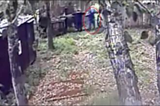 Un rus era să rămână fără un braț după ce s-a apropiat de un urs